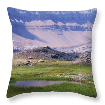Grizzly Meadows Throw Pillow