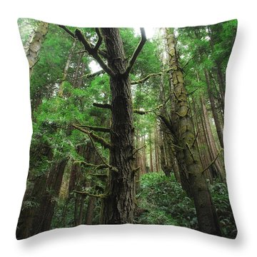 Groovin With The Redwoods Throw Pillow