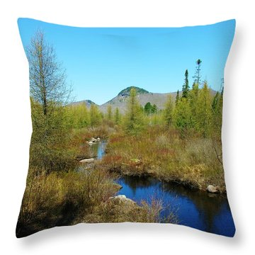 Throw Pillow featuring the photograph Groton State Forest Moose Country by Sherman Perry
