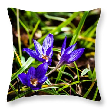 Hocus Crocus Throw Pillow