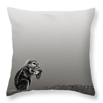 Ground Squirrel Throw Pillow by Johan Swanepoel