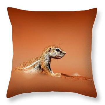 Squirrel Throw Pillows