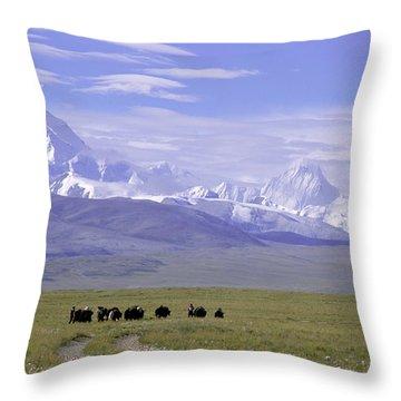 Group Of Yaks Walk Across A Green Throw Pillow