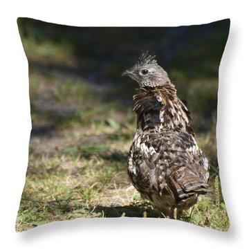 Grouse Hunter Throw Pillow