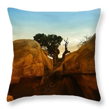 Growing Between The Rocks Throw Pillow by Jeff Swan