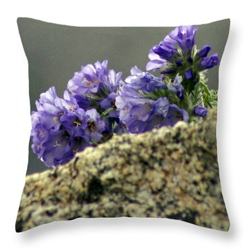 Throw Pillow featuring the photograph Growing In Granite by Jeremy Rhoades