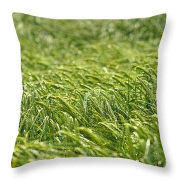 Growing Throw Pillow by Ivan Slosar