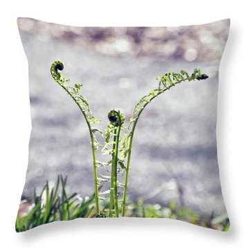 Throw Pillow featuring the photograph Growing  by Kerri Farley