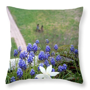 Throw Pillow featuring the photograph Growing by Marc Philippe Joly