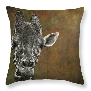 Grungy Giraffe 5654 Brown Throw Pillow