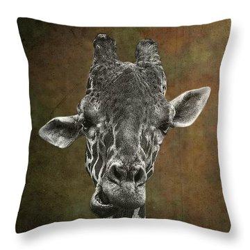 Grungy Giraffe 5654 Brown Throw Pillow