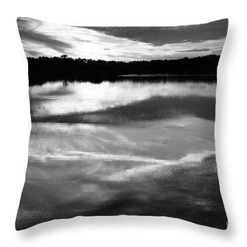 Guana Beach Reflections Throw Pillow