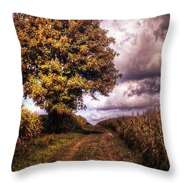 Guardian Of The Field Throw Pillow by Daniel Heine