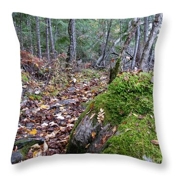 Guardian Rock Throw Pillow by Leone Lund
