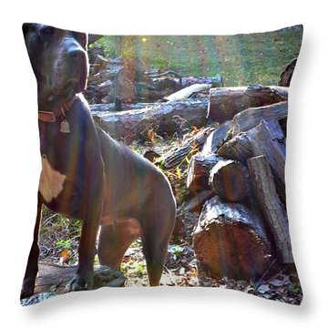 Throw Pillow featuring the photograph Guarding The Kingdom by Carlee Ojeda