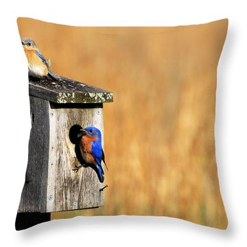Guarding The Nest Throw Pillow