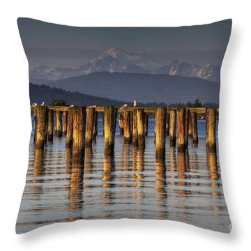 Guemes Channel Trail View Throw Pillow