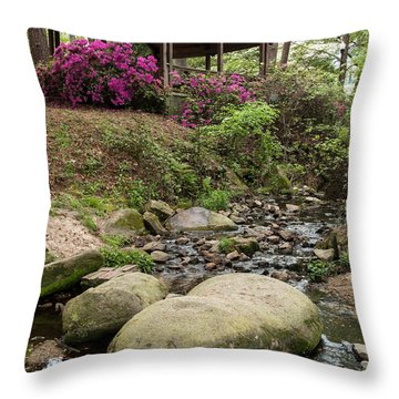 Guignard Park-1 Throw Pillow