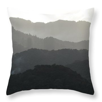 Guilarte Throw Pillow