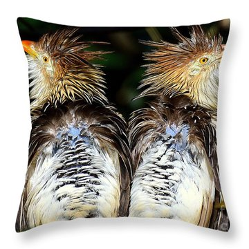 Guira Cuckoos Throw Pillow