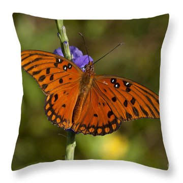 Throw Pillow featuring the photograph Gulf Fritillary Butterfly by Meg Rousher