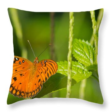 Throw Pillow featuring the photograph Gulf Fritillary by Jane Luxton