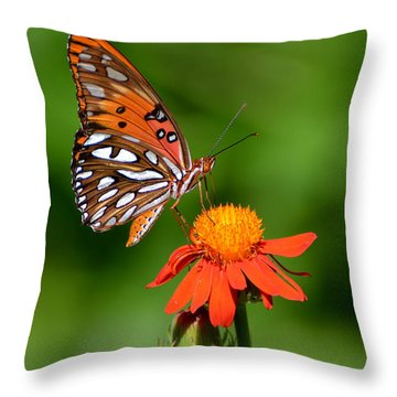 Gulf Fritillary Underwing Throw Pillow