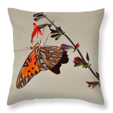 Gulf Fritillary Underwings Throw Pillow by Jodi Terracina