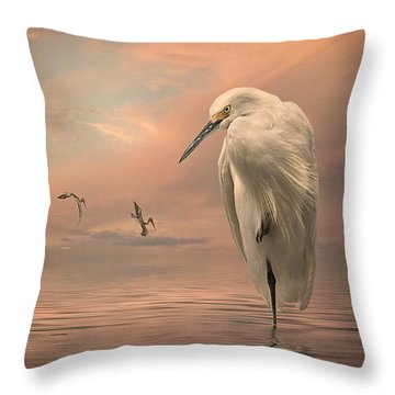Gulf Sunset Throw Pillow by Brian Tarr