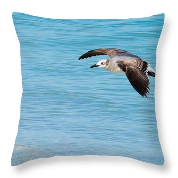 Gull At Lido Beach IIi Throw Pillow