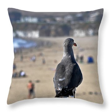 Gull Watching Beach Visitors Throw Pillow by Susan Wiedmann