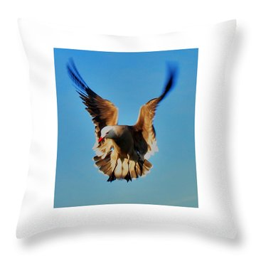 Gull Wing Throw Pillow