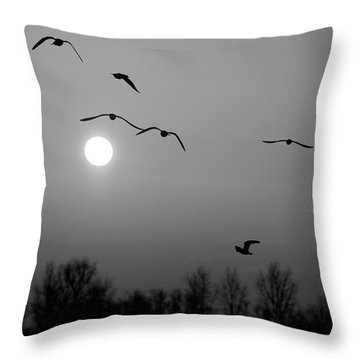 Gulls On The Vistula River Throw Pillow