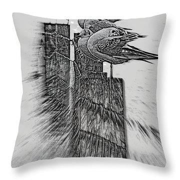 Gulls In Pencil Effect Throw Pillow by Linsey Williams