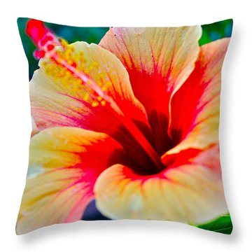 Gumamela1 Throw Pillow