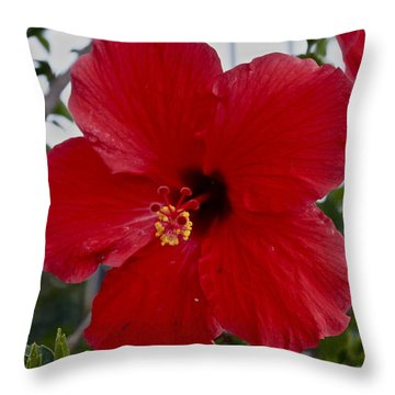 Gumamela2 Throw Pillow
