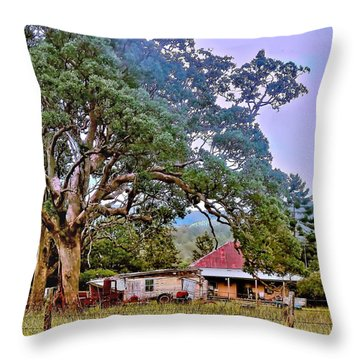 Throw Pillow featuring the photograph Gumtree Gully by Wallaroo Images