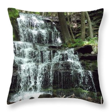 Gun Brook Falls Throw Pillow