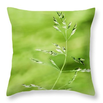 Gust Of Wind - Featured 3 Throw Pillow by Alexander Senin