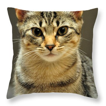 Throw Pillow featuring the photograph Gypsy by Barbara Manis