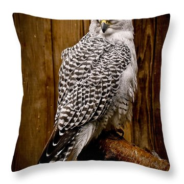 Gyrfalcon Perched Throw Pillow