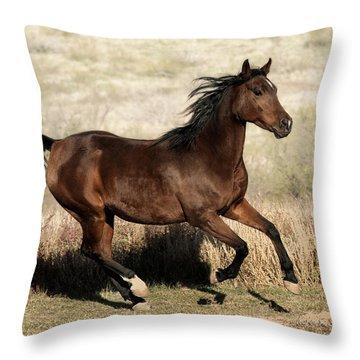 Throw Pillow featuring the photograph Habiba  by Karen Slagle