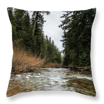 Hackleman Creek  Throw Pillow