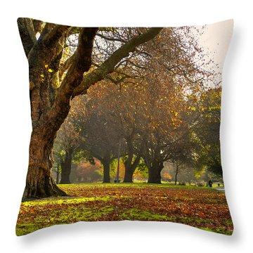 Hagley In Autumn Throw Pillow
