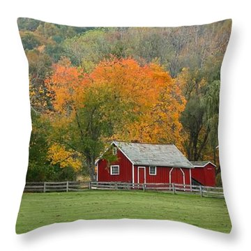 Hale Farm And Village Throw Pillow by Daniel Behm