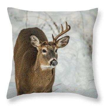 Half Rack Throw Pillow