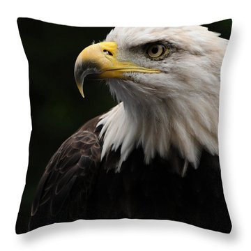 Throw Pillow featuring the photograph Haliaeetus Laucocephalus by Mike Martin
