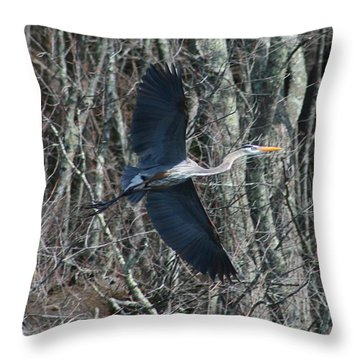 Hallelujah Throw Pillow by Neal Eslinger