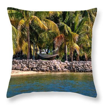 Hammock At The Park Throw Pillow by Pamela Blizzard