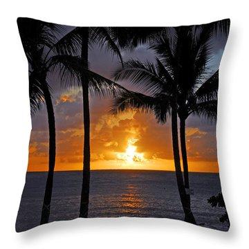 Hammock Sunset Throw Pillow by Lynn Bauer